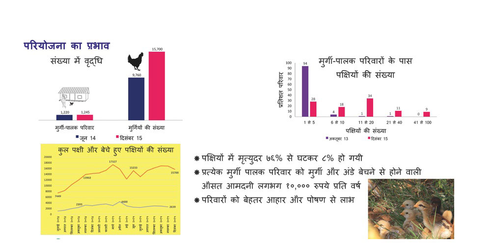 http://sapplpp.org/photogallery/about-sa-pplpp/Panel-Poultry-pilot-in-jhabua/image_view_fullscreen