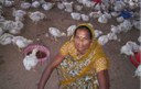 Sukritbai Chautele's successful poultry enterprise is an inspiration to her family and neighbours