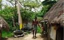 Herbal medicines not only cure but also build resistance against disease, says Jayaraman, a livestock healer in Village Vandipalayam, District Villupuram, Tamil Nadu
